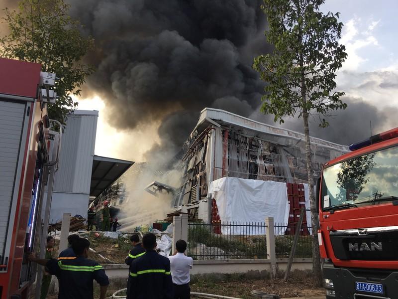 Bình Dương: Một công ty đang bốc cháy dữ dội - ảnh 10