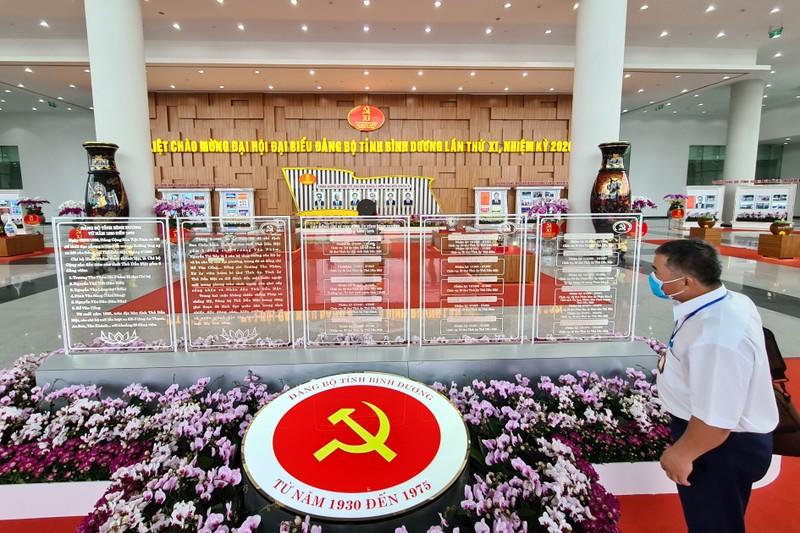 Đại hội Đảng bộ tỉnh Bình Dương lần thứ XI vào phiên trù bị - ảnh 7