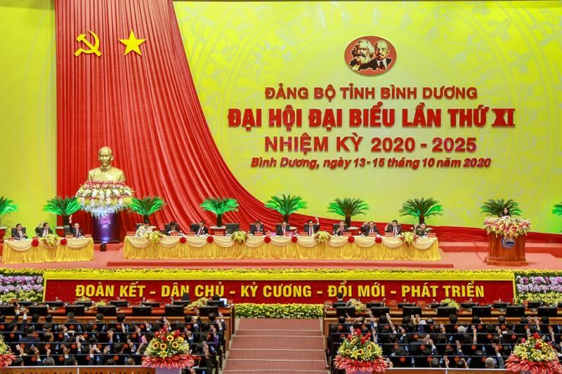 Đại hội Đảng bộ tỉnh Bình Dương lần thứ XI vào phiên trù bị - ảnh 8