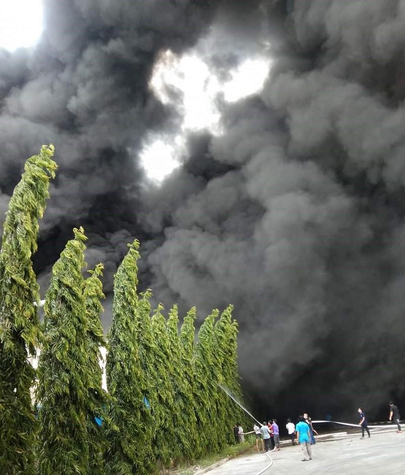 Cháy lớn tại công ty sản xuất mút xốp ở Bình Dương - ảnh 2