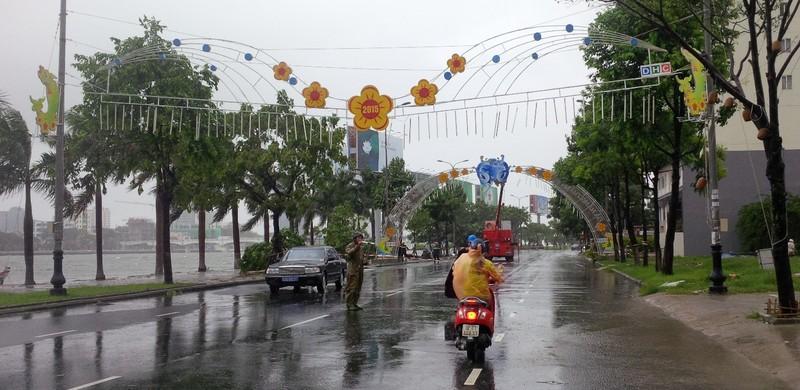 Bão số 3 áp sát, cây gãy đổ la liệt trên đường phố Đà Nẵng  - ảnh 9