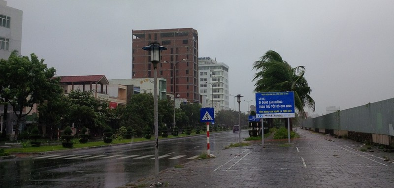 Bão số 3 áp sát, cây gãy đổ la liệt trên đường phố Đà Nẵng  - ảnh 8