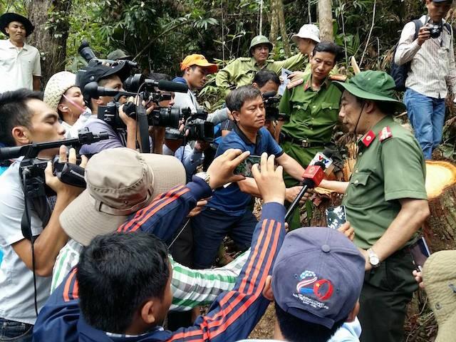 Lãnh đạo tỉnh băng rừng, chứng kiến cảnh phá rừng pơ mu tàn bạo - ảnh 2