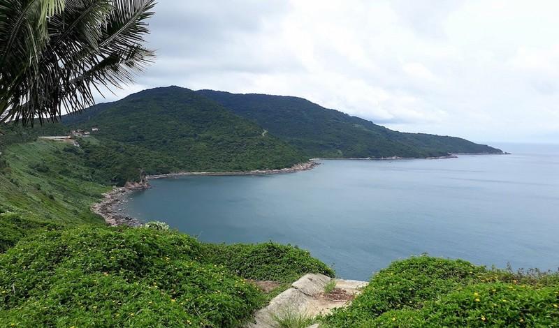 Dừng tham quan bán đảo Sơn Trà từ ngày 2-11 - ảnh 1