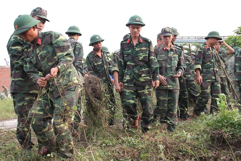Lãnh đạo Đà Nẵng làm vệ sinh môi trường hưởng ứng APEC - ảnh 3