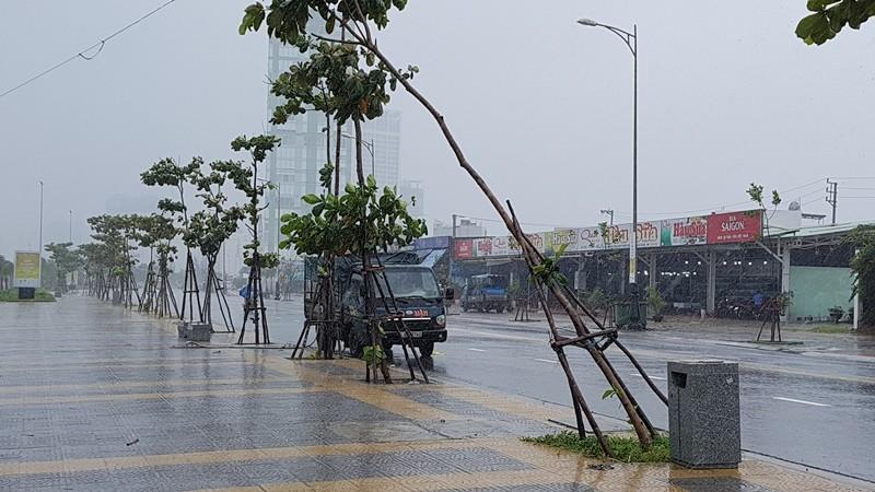 Đà Nẵng thiệt hại nặng sau cơn mưa lớn - ảnh 2