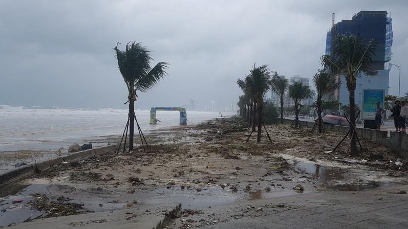 Đà Nẵng: Cổng chào, cây cối gãy ngã la liệt do bão  - ảnh 12