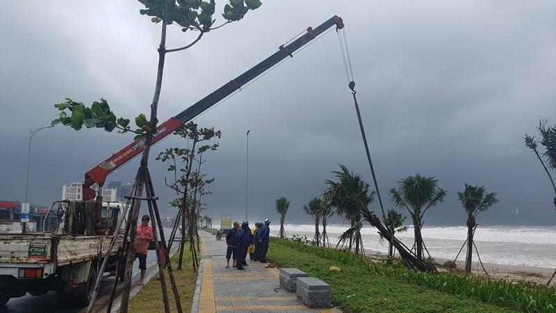 Đà Nẵng: Cổng chào, cây cối gãy ngã la liệt do bão  - ảnh 13
