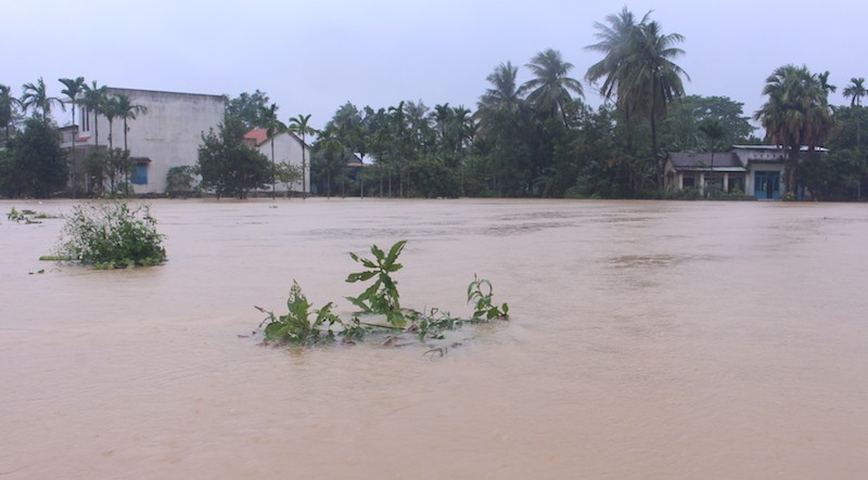 Đà Nẵng lũ đang nhấn chìm hơn 2.500 nhà dân - ảnh 2