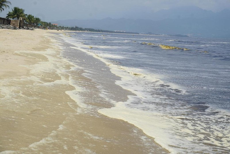 Nước biển đen ngòm kèm mùi hôi tại biển Đà Nẵng - ảnh 3