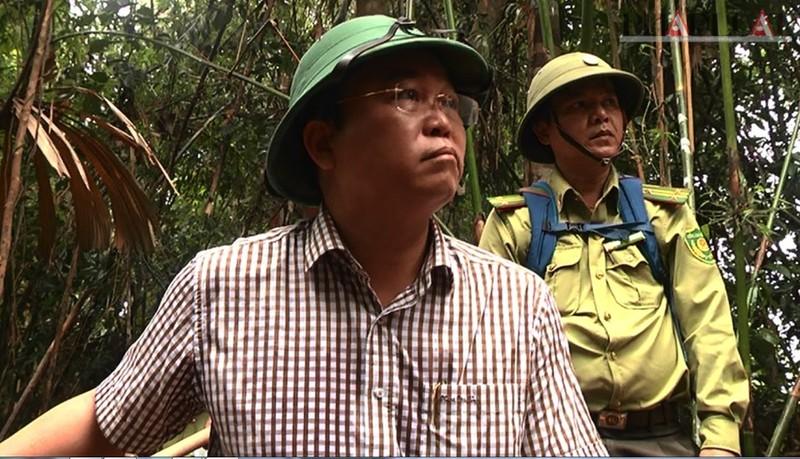 Phó chủ tịch Quảng Nam thị sát rừng Đông Giang bị phá - ảnh 2