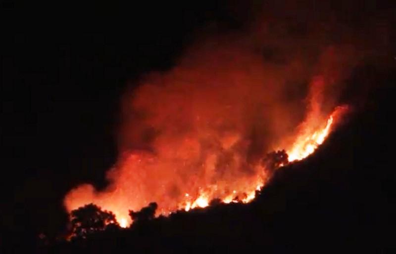 Hàng trăm người chữa cháy rừng trong đêm - ảnh 1