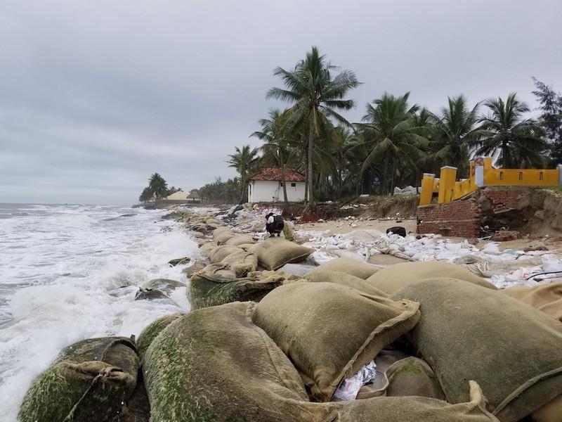 Hội An: Bờ biển Cửa Đại tan hoang - ảnh 7