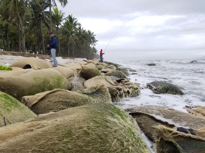 Hội An: Bờ biển Cửa Đại tan hoang - ảnh 5