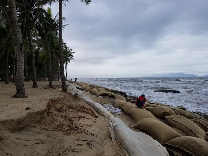 Hội An: Bờ biển Cửa Đại tan hoang - ảnh 3