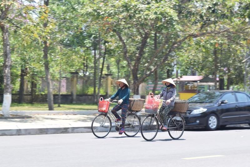 Quảng Nam: Nắng nóng, cuộc sống đảo lộn - ảnh 3