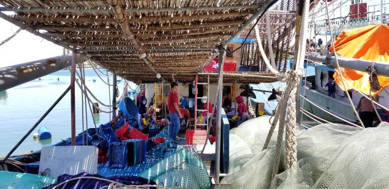Ngư dân tố bị tàu Trung Quốc áp sát lấy đi hơn 2 tấn mực khô - ảnh 3