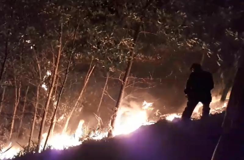 Cháy rừng lớn tại Quảng Nam, thiệt hại hàng trăm ha - ảnh 1