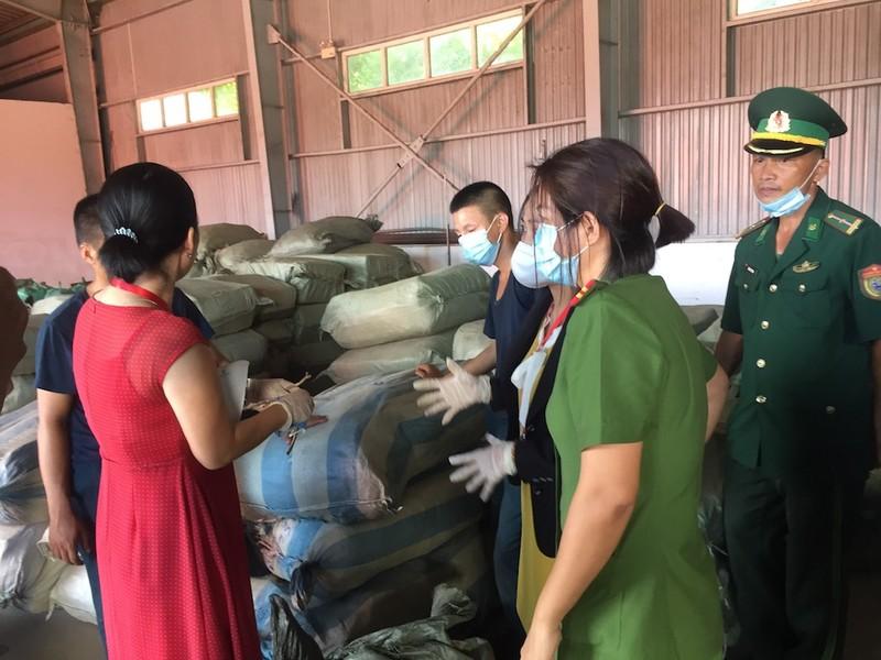 Nóng: 103 tấn dược liệu đội lốt củ cải nhập vào Đà Nẵng - ảnh 2