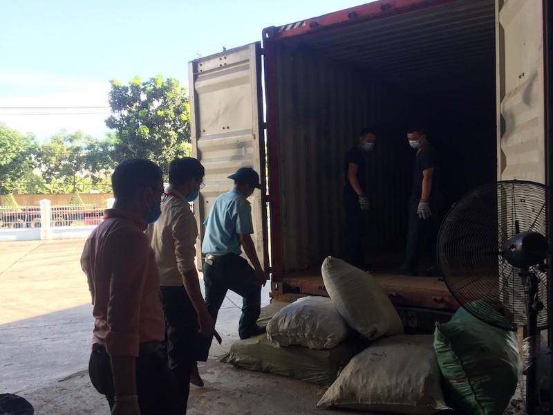 Nóng: 103 tấn dược liệu đội lốt củ cải nhập vào Đà Nẵng - ảnh 1