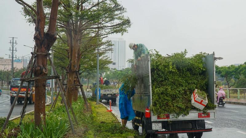 Đà Nẵng khẩn trương chống bão số 5 đang đến - ảnh 3