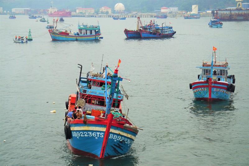 Đà Nẵng khẩn trương chống bão số 5 đang đến - ảnh 5