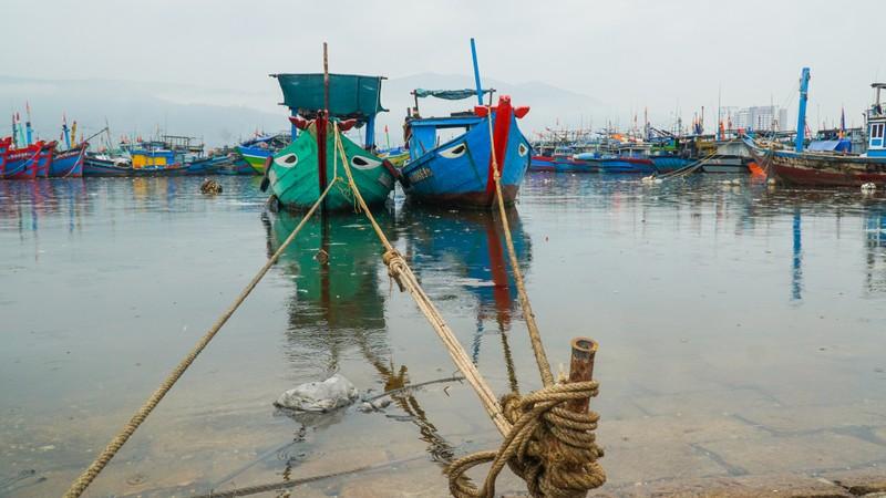 Đà Nẵng khẩn trương chống bão số 5 đang đến - ảnh 6