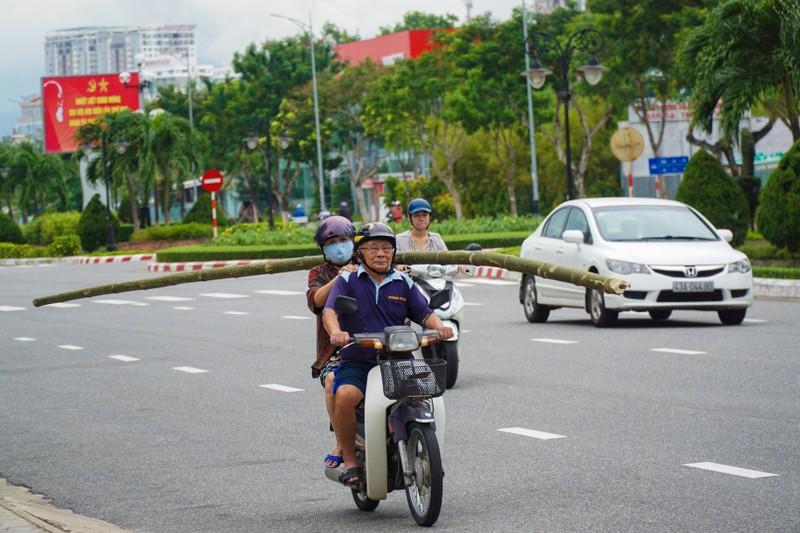 Khách sạn ở Đà Nẵng thuê container về chống bão số 9 - ảnh 4