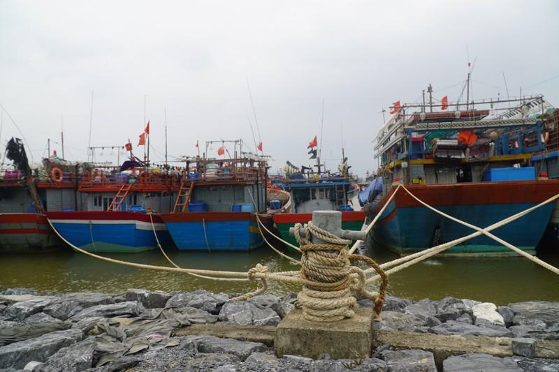 Ngư dân Quảng Bình sẵn sàng đón bão - ảnh 2