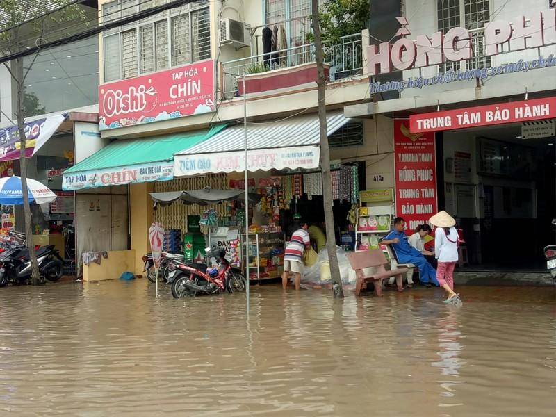 Nước đầu nguồn lên sớm, nhiều nơi ĐBSCL ngập nặng - ảnh 4