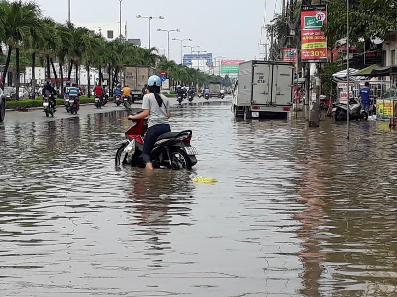 Nước đầu nguồn lên sớm, nhiều nơi ĐBSCL ngập nặng - ảnh 6