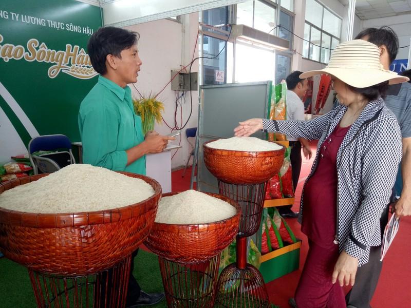 Đã giảm xin-cho khi bán hạt gạo Việt ra nước ngoài  - ảnh 2