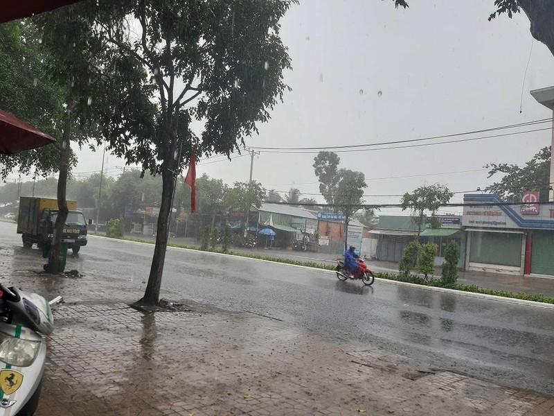 """Cơn mưa """"vàng"""" đã giải nhiệt cho người dân Cần Thơ - ảnh 1"""