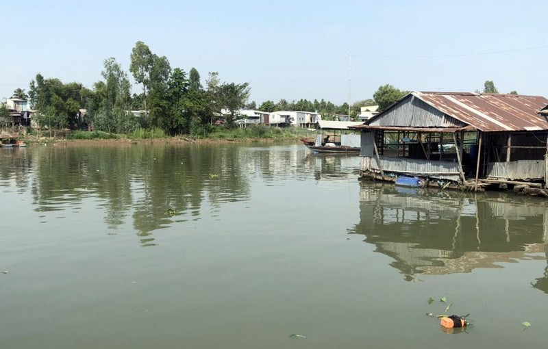 Hàng chục tấn cá nuôi bè trên sông Cái Vừng chết đột ngột - ảnh 2