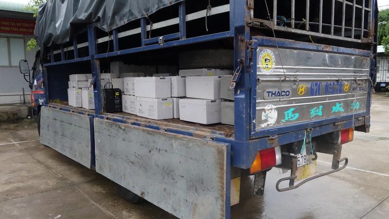 An Giang: Bắt 2 xe vận chuyển 28 tấn chất thải nguy hại - ảnh 2