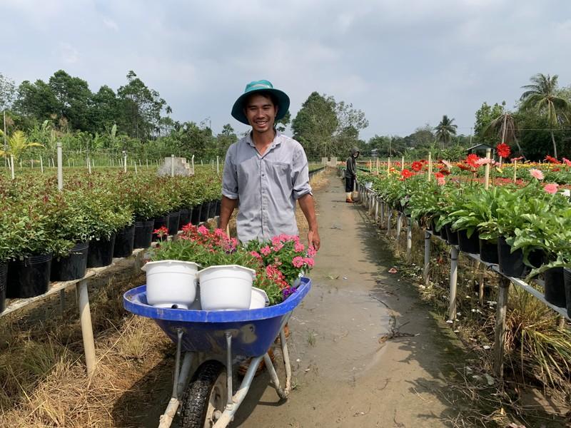 Làng hoa Sa Đéc: Hàng triệu giỏ hoa chuẩn bị ra chợ Tết - ảnh 6