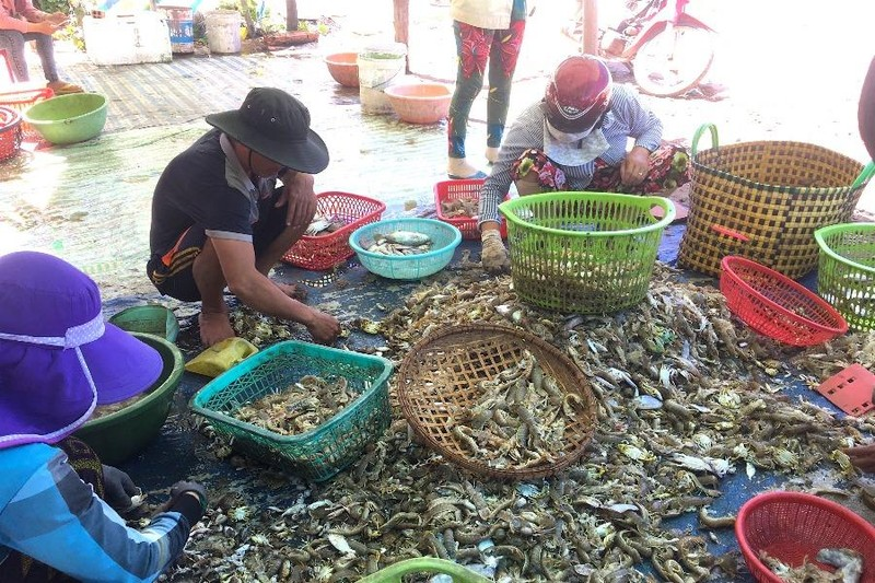 Trà Vinh tạo điều kiện cho thương lái thu mua nông, thủy sản - ảnh 1