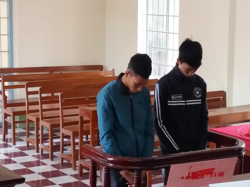 Tham lam, nam sinh viên vướng vòng lao lý