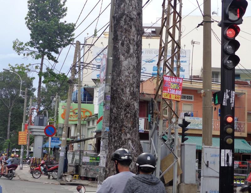 TP.HCM: Bắt được toàn 'xe lạ' đi vào đường cấm - ảnh 4