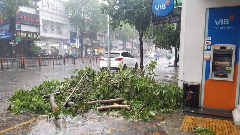 TP.HCM mưa khủng khiếp, kèm gió giật sau bão số 9 - ảnh 2