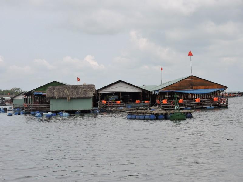 Thành ủy Vũng Tàu kiến nghị cho nhà hàng bè nổi tạm hoạt động lại dịp lễ 2-9 - ảnh 1