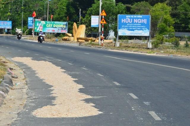 Trúng mùa ruốc, ngư dân Hồ Tràm thu tiền triệu mỗi ngày - ảnh 1