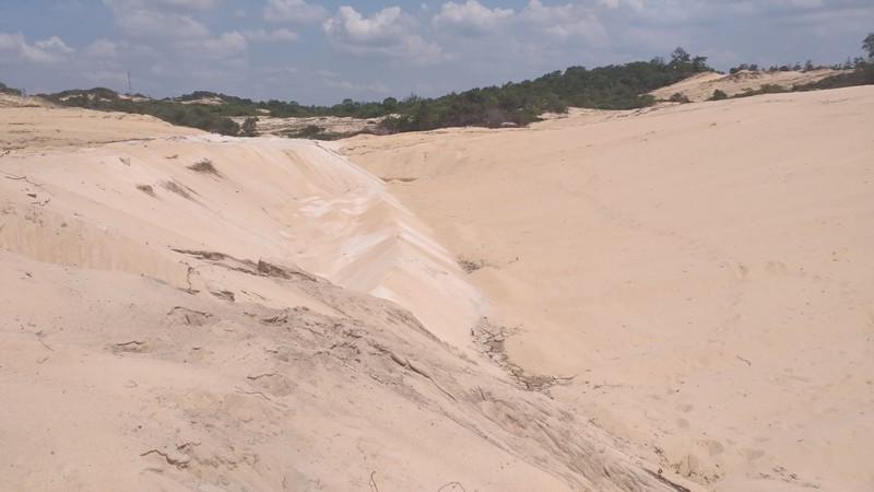 Phạt công ty khai thác cát trộm 100 triệu, tịch thu tang vật - ảnh 1