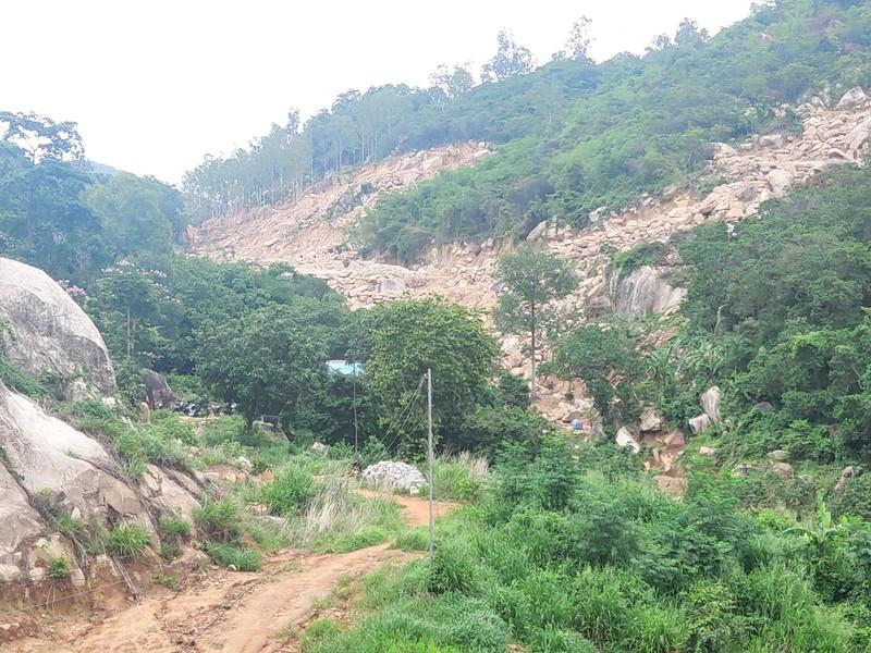 Bà Rịa- Vũng Tàu khởi tố vụ án hủy hoại rừng ở núi Thị Vải - ảnh 2