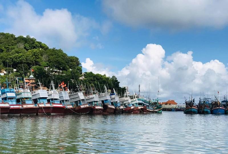 Bà Rịa-Vũng Tàu chuẩn bị 'mở biển' ở vùng xanh  - ảnh 2