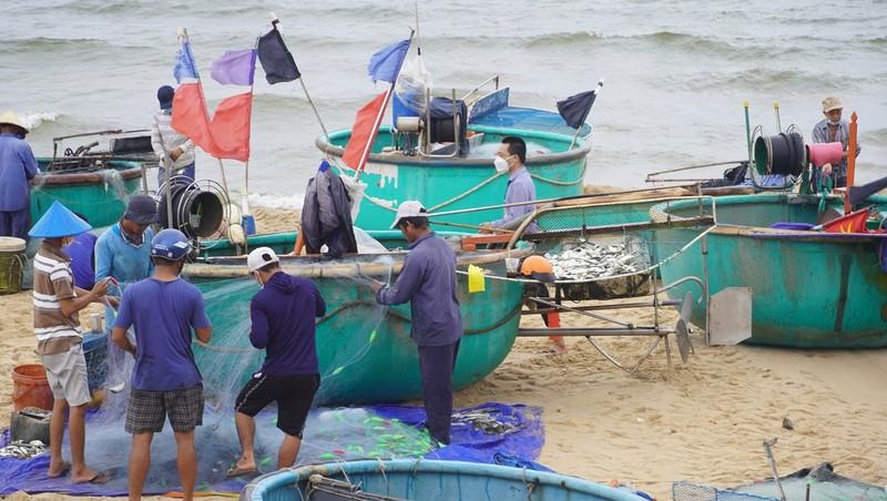 Ngư dân vùng xanh Bà Rịa- Vũng Tàu đi biển chuyến đầu tiên sau giãn cách - ảnh 1