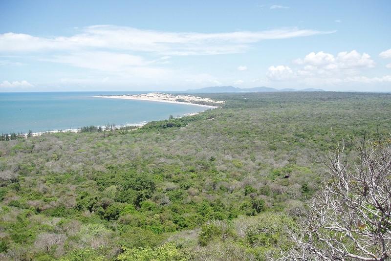 Xử lý dứt điểm vi phạm trong nhận khoán, bảo vệ rừng ở Xuyên Mộc - ảnh 1