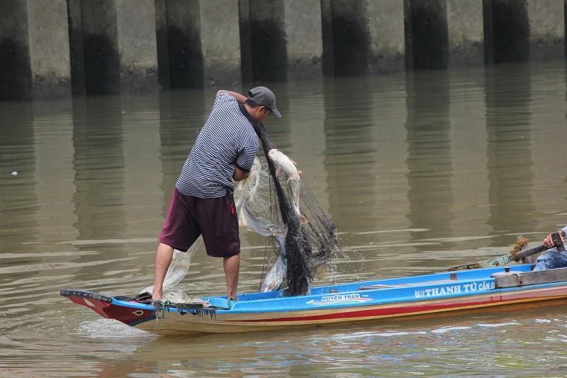Ngang nhiên chài lưới bắt cá trên kênh Nhiêu Lộc - ảnh 3