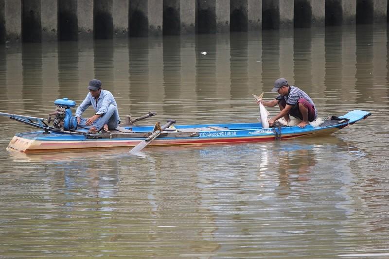 Ngang nhiên chài lưới bắt cá trên kênh Nhiêu Lộc - ảnh 4