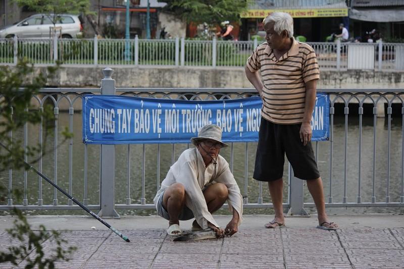 Ngang nhiên chài lưới bắt cá trên kênh Nhiêu Lộc - ảnh 7